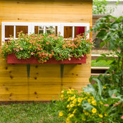 childrens_garden_house_242.jpg