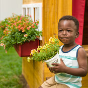 childrens_garden_house_380.jpg