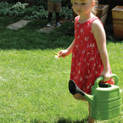 olive-watering-can.jpg