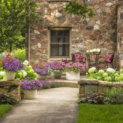 stone_house_front_yard_38.jpg